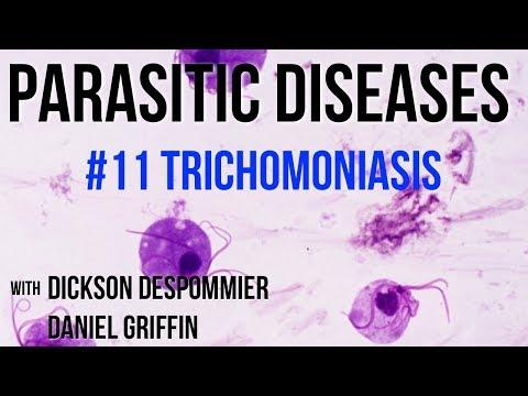 ascariasis fertőzés mi miatt