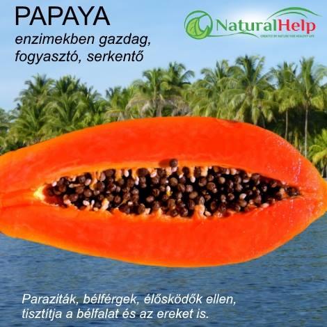 paraziták mosatlan zöldségekből és gyümölcsökből)