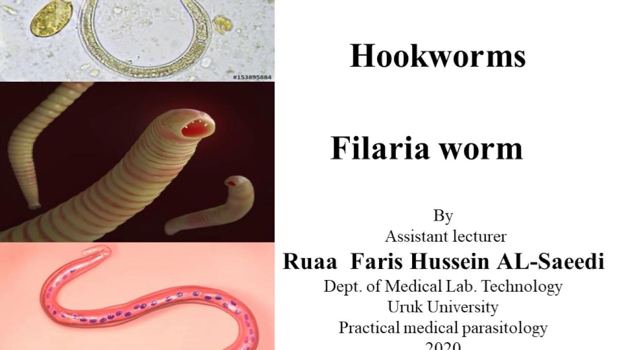 pinworm szerkezete antihelmintikus gyógyszerek osztályozása