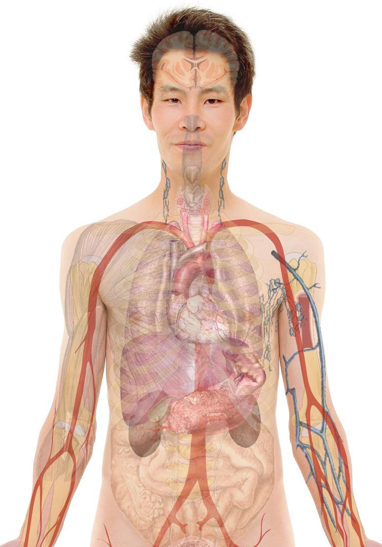 Paraziták a szervezetünkben: mikor gyanakodjunk? - HáziPatika - A paraziták okai a testben