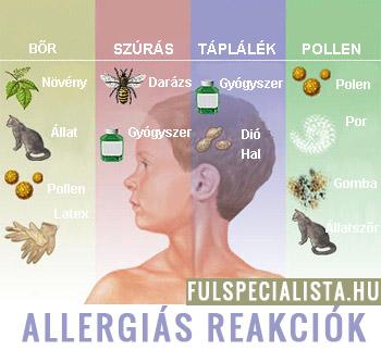 allergiás paraziták kezelése