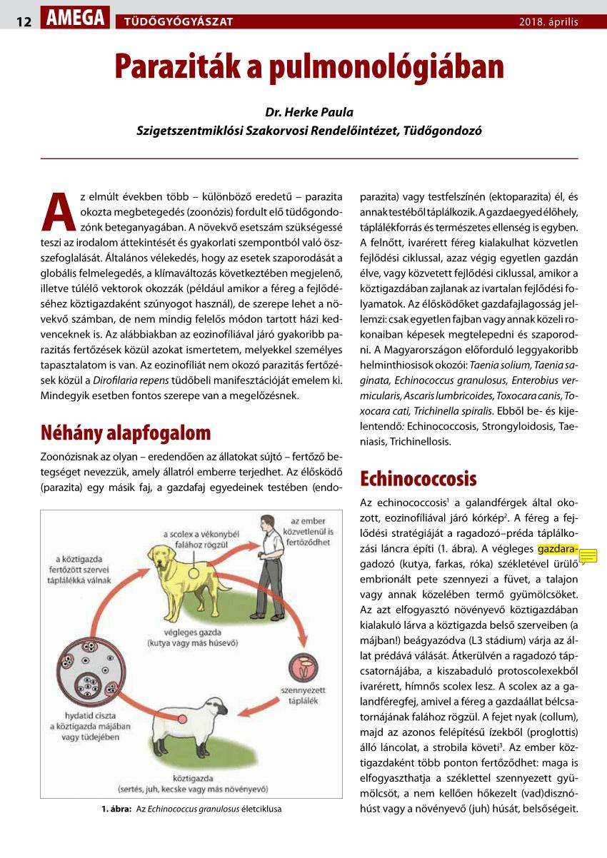 paraziták szerológiai markerei paraziták az orrmelléküregekben