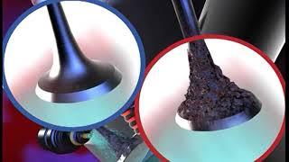 paraziták az emberi testben hogyan lehet eltávolítani ascariasis invazív stádium az emberek számára