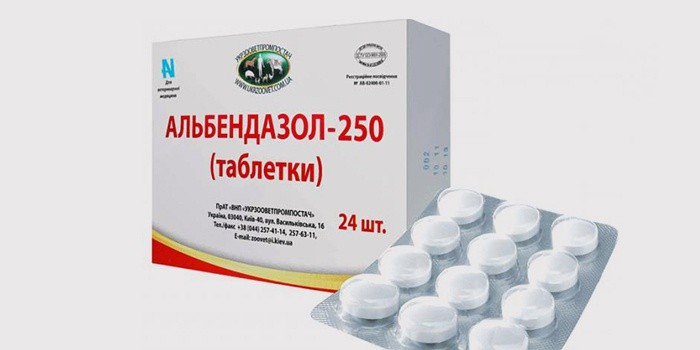 körömféreg- ciklus vizsga gyógyszerek a bélparaziták megelőzésére