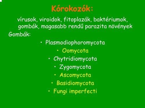 parazita a paprikában parazitatojások kezelése