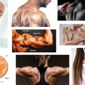 testüreg körömféregben válaszoljon választ pinwormok a végbélben, hogyan lehet megszabadulni