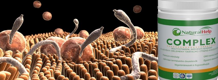 komplex féreghajtó szerek sorolja fel az összes parazitát