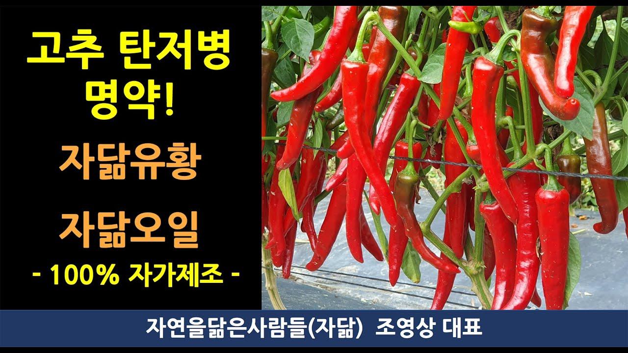 Chili paraziták. chili paraziták ellen - turizmusbarcs.hu - Paraziták emberben tv show