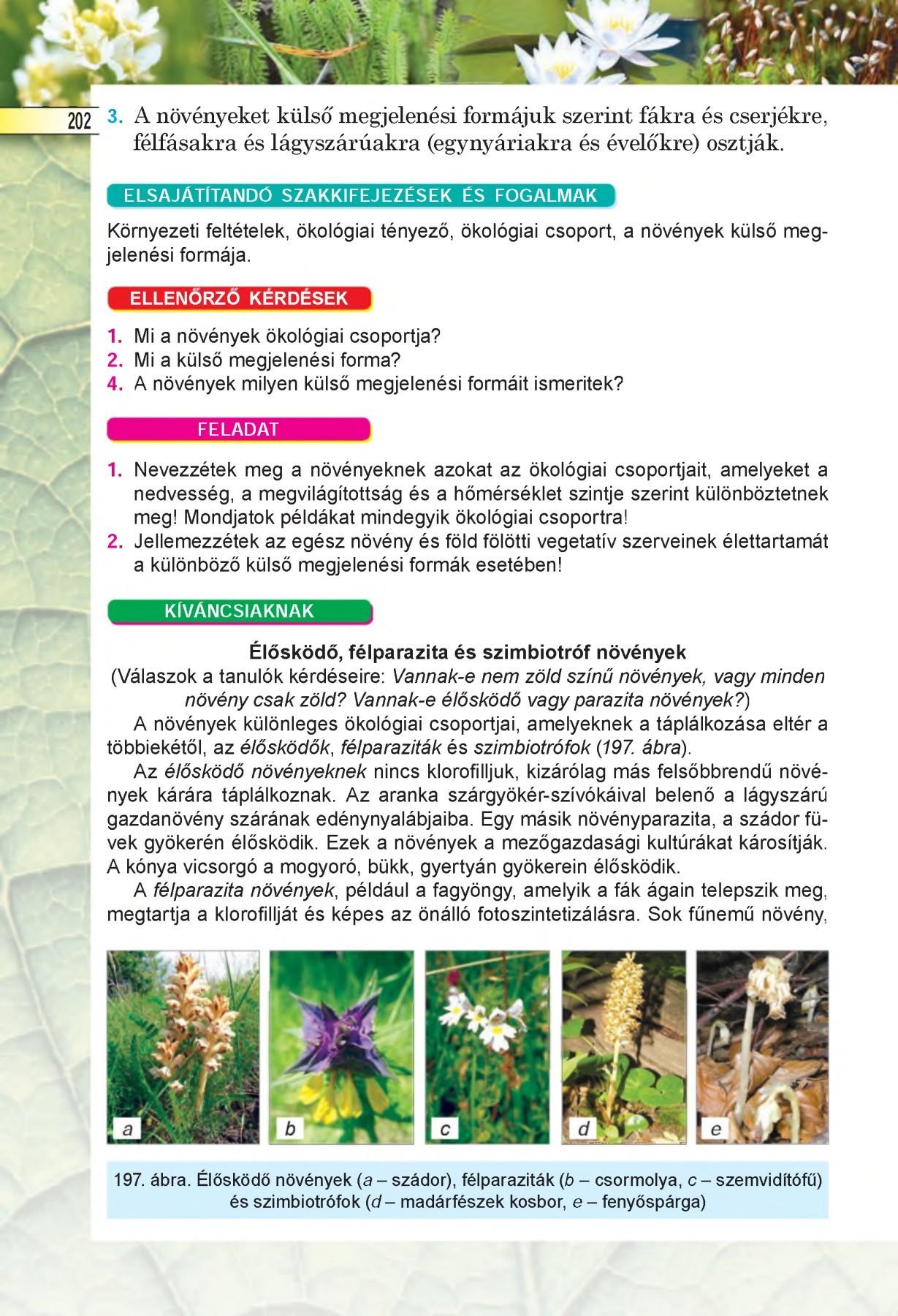 Kospeciáció – Wikipédia Ökológiai paraziták